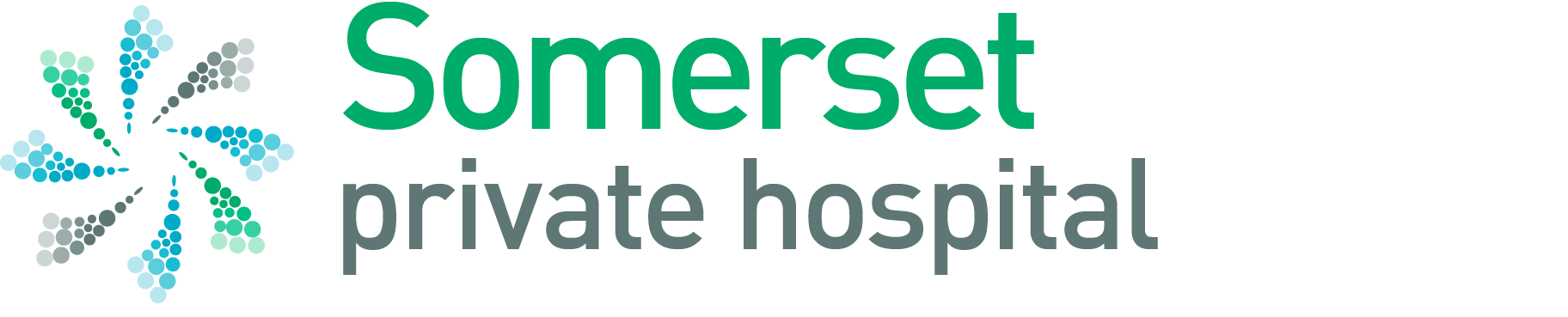 Somerset Private Hospital image